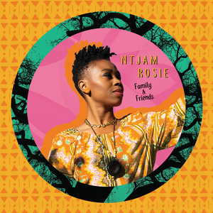Ntjam Rosie concert at Paard, The Hague on 26 March 2020