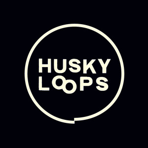 Husky Loops concert at Paradiso Kleine Zaal, Amsterdam on 27 October 2019